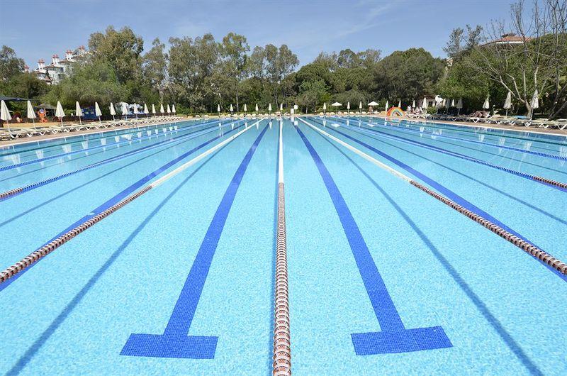 从游泳名将吴鹏的鹏之星说起,游泳创业项目为什么那么少?| 创业熊