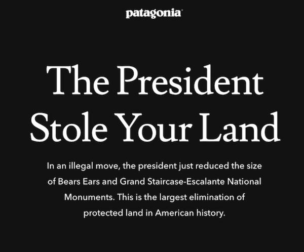 """因环保控诉特朗普、退出零售大会,户外品牌巴塔哥尼亚如何成为""""消费文化反叛者"""""""